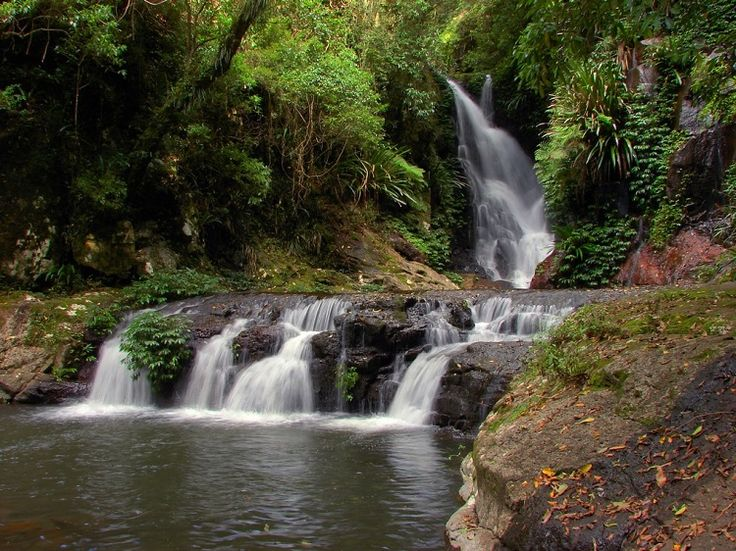 Visit the Gold Coast Hinterland - a Lonely Planet Guide.
