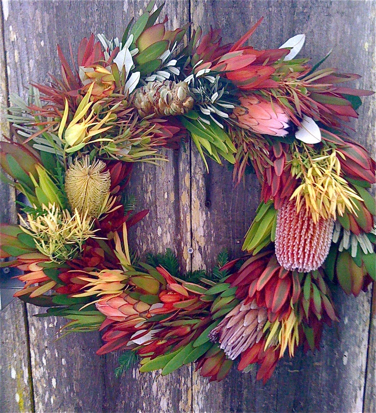 Australian Native Shade Plants: 28 Best Images About Australian Bush Christmas On