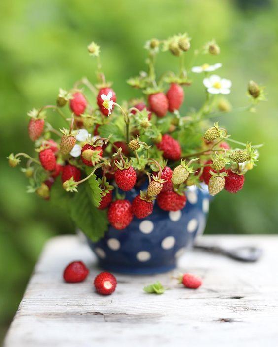 али доброе утро открытки ягоды нас налажено собственное