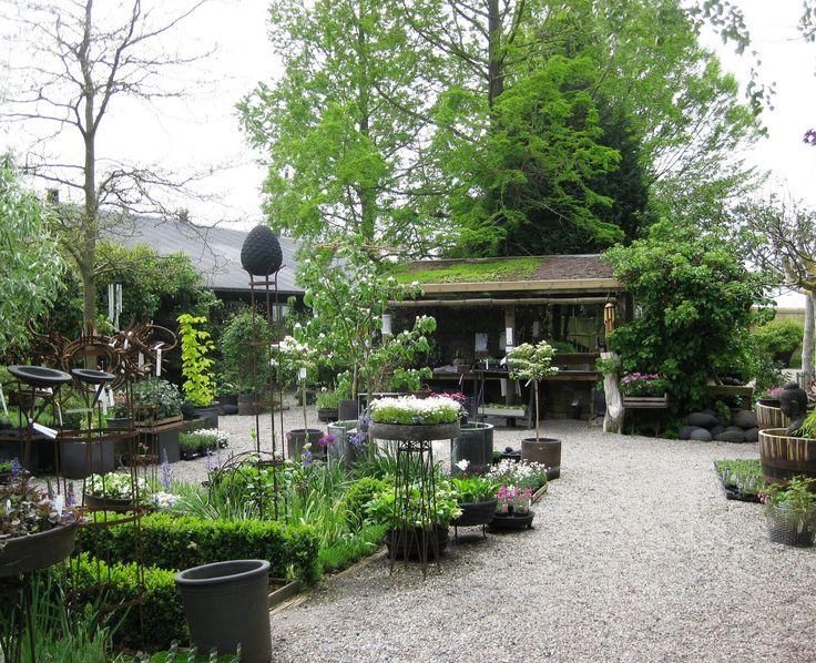 1474 best images about garden center ideas on pinterest for Idea verde garden center