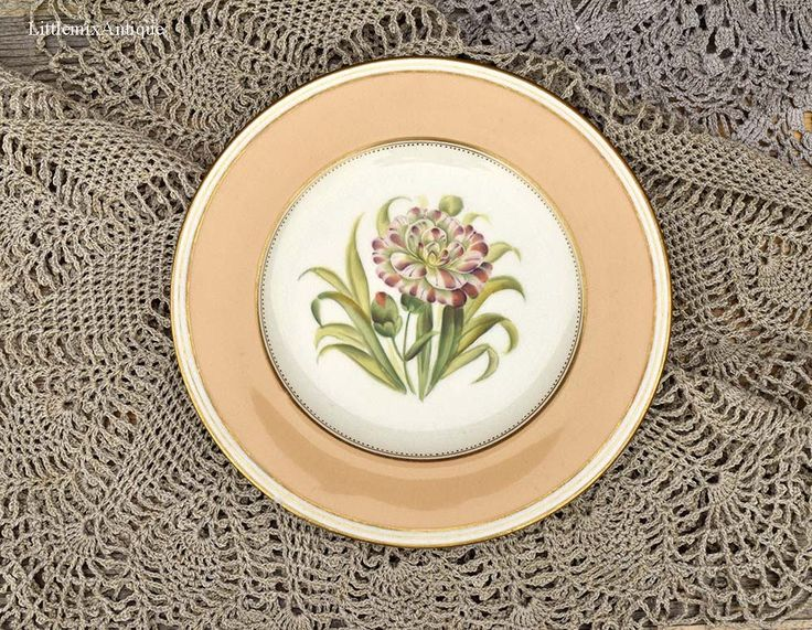 Antique Victorian Period Painted Botanical Flower&Yellow Rim Retro Decorative Plate Retailed by Alfred B Pearce 39 Ludgate Hill, London by LittlemixAntique on Etsy