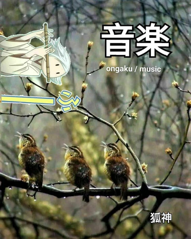 Tomoe Mikage, Mizuki Kamisama Hajimemashita / Kamisama Kiss Japanese just for fun 狐様福の神です