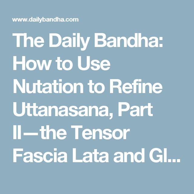 The Daily Bandha: How to Use Nutation to Refine Uttanasana, Part II—the Tensor Fascia Lata and Gluteus Medius