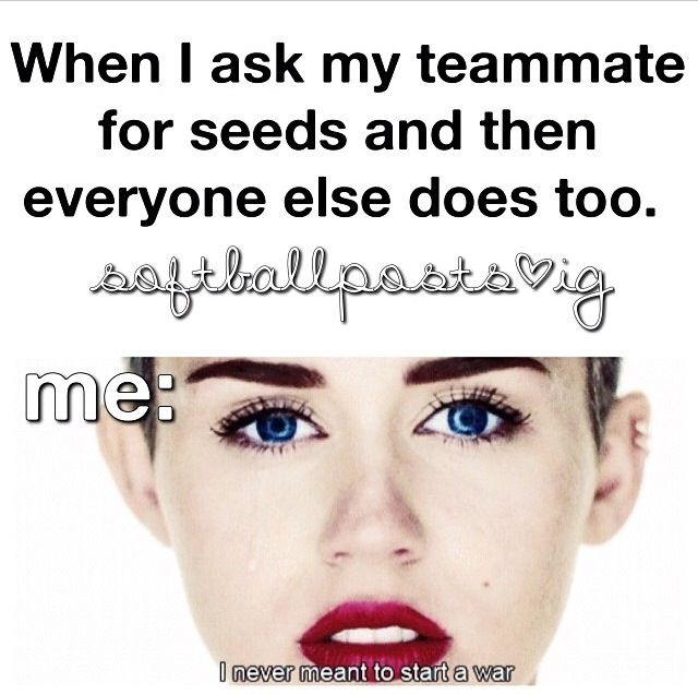 Softball | Softball | Pinterest | Sunflower seeds ...