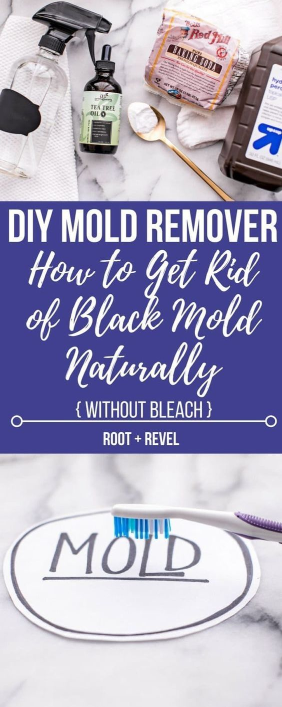 Diy mold remover recipe mold removal baseboard and - Getting rid of black mold in bathroom ...