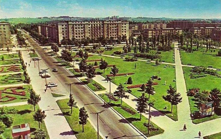 Aleja Róż, 1959