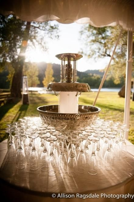 35 Best Apex Fountains Champagne Beverage And Punch