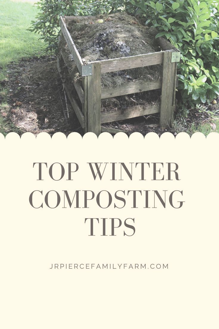 Winter Composting -everything you need to know!  – Raised Bed Gardening