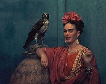 <3: Life Title, Still Life, Pet Hawks, Blue Houses, Blinds Eye, Frida Kahlo