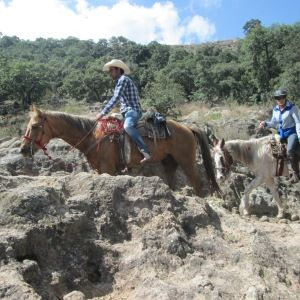 A favorite ride for many of our guests is the day trip to La Copa. It is a fantastic mix of everything…from relaxingwalks through the beautiful countryside, to breathtaking climbs, and exhilarating canters on the flat plains. There's something for everyone on this adventurous ride!  #LaCopa #Mexico #Horseback #Riding #Vacation #Equitrekking #Adventure #Travel #Equestrians