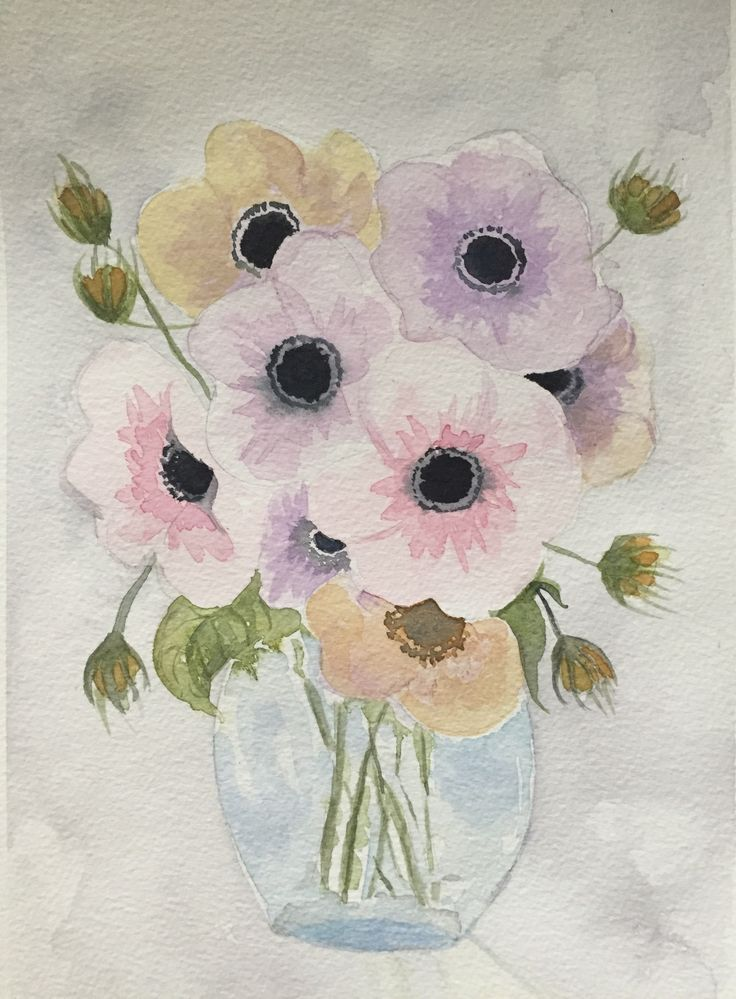 Anemone in watercolor