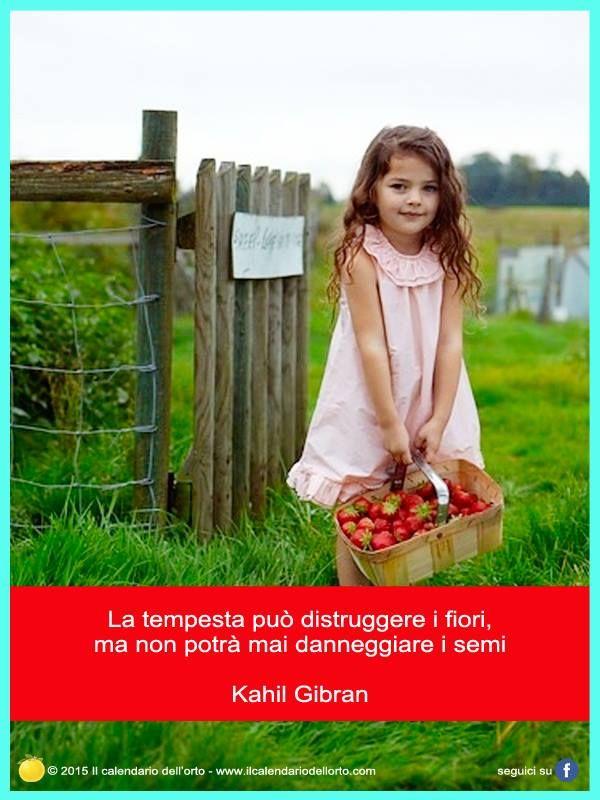 La tempesta può distruggere i fiori, ma non potrà mai danneggiare i semi. Kahir Gibran