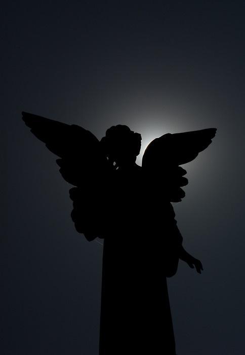 weeping angel silhouette wwwimgkidcom the image kid