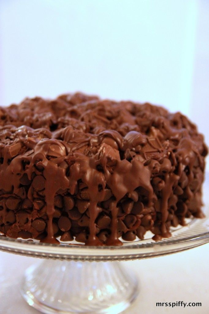Chocolate Wasted Cake - Uses Duncan Hines decadent triple chocolate cake mix, with a sour cream twist.
