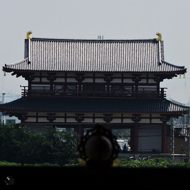 Główna brama Suzaku przedpałacem Heijo.  Suzaku gate in front of Heijō Palace.    #japan #nihon #japonia # japon #nara #heijo #suzaku