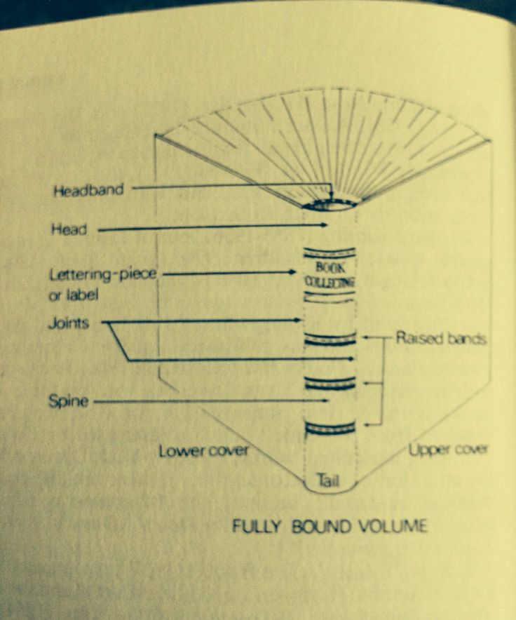Vintage book collecting terms to know when describing a fully bound volume.