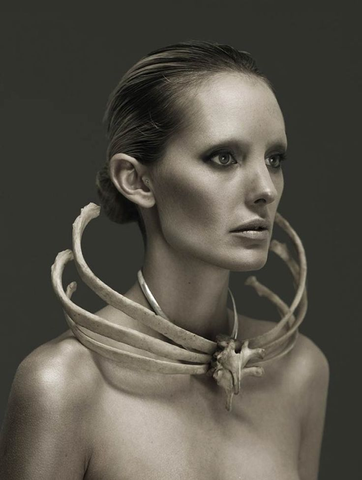 Roadkill Couture – Dead animals meet fashion (image)
