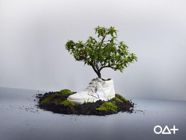 Biosemlimites | Tênis ecológico – Ao ser enterrado se biodegrada e se transforma em flor