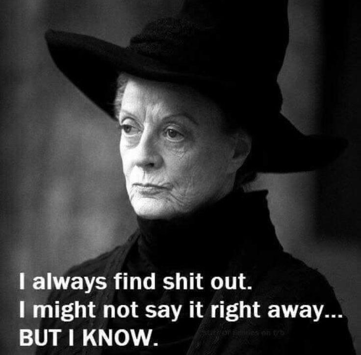 McGonagall, my favourite teacher at Hogwarts