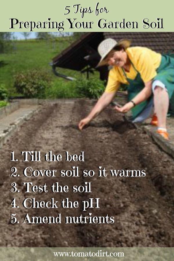 7e7b1665cec4cbfd536cd39493b530e5 - How To Prepare Georgia Soil For Gardening
