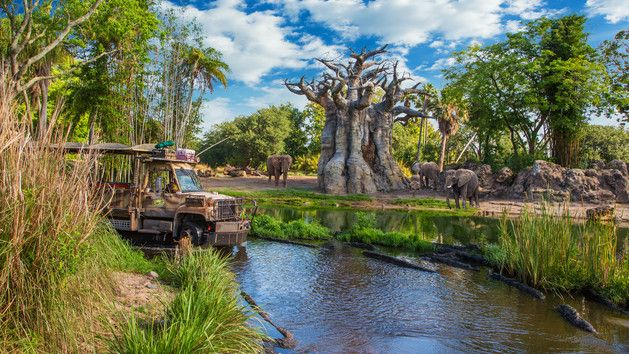 KILIMANJARO SAFARIS® Celebrate adventure, fantasy, the past, the future and the imagination! Look at this Walt Disney World attraction.