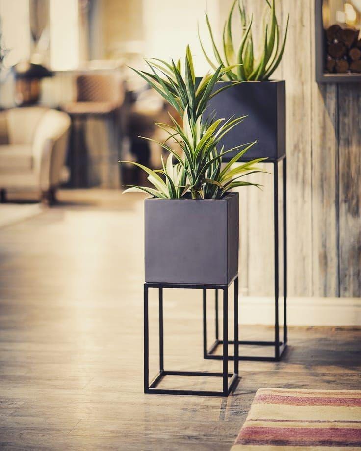 New The 10 Best Home Decor With Pictures Tres Joli Support De Plantes En Fer Plein N Decoration Plantes Interieur Plantes De Decor De Maison Deco Salon