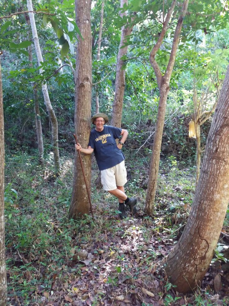My husband, the lover of forest.  He walks everyday an hour to refreses his brain. He loves mahoni site of the forest.