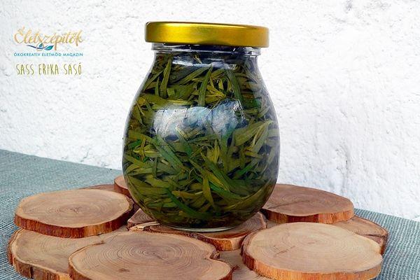 Öt bevált módszer fűszernövények tartósításához