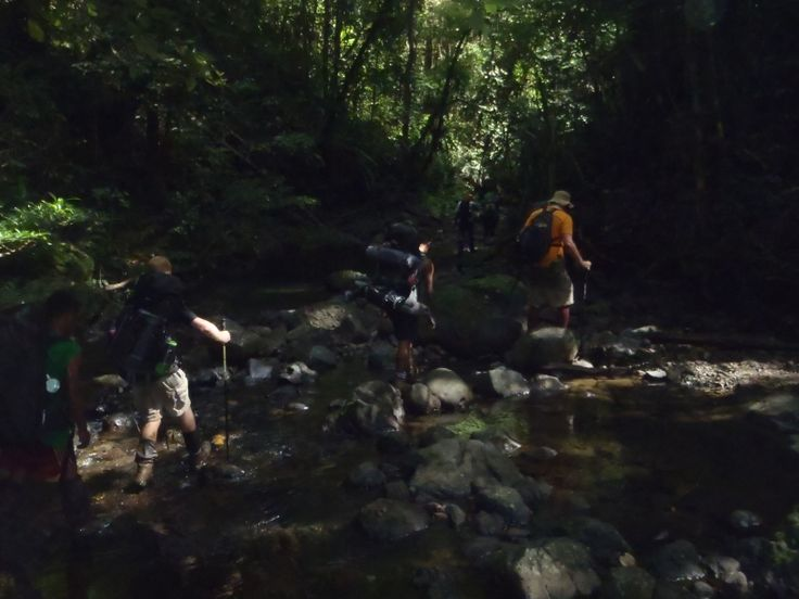 Ua-Ule Creek, Kokoda Track, Papua New Guinea: This section of the track crosses the same creek about 9 times. Kokoda Trail Expeditions trekkers and porters seen here going through one of the many crossings.