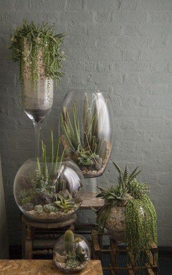 46 Ideen für großartige Luftpflanzen-Terrarien f…