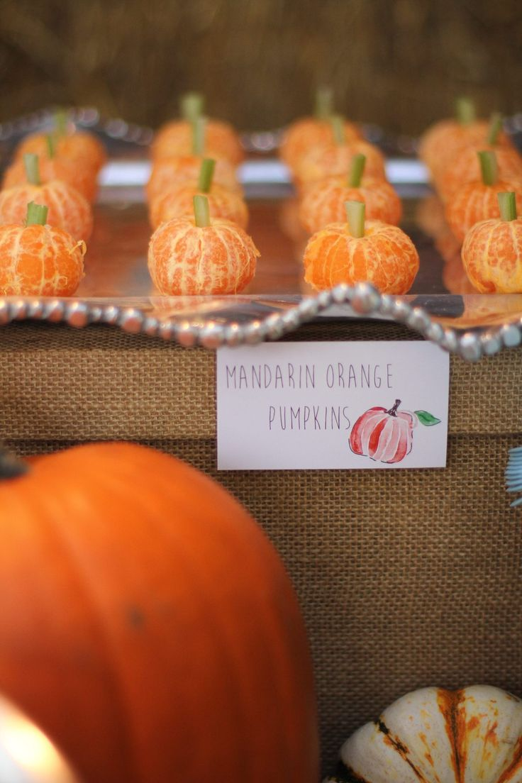 pumpkin patch kids birthday party