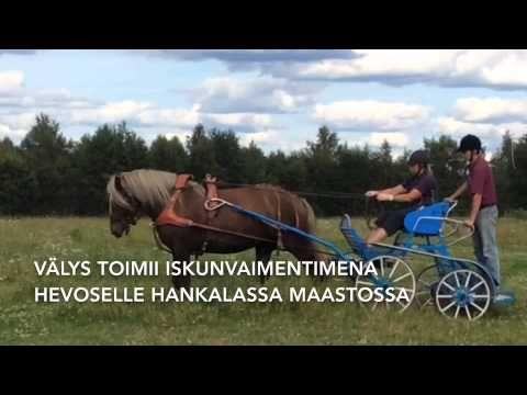MW Hevospalvelut - YouTube