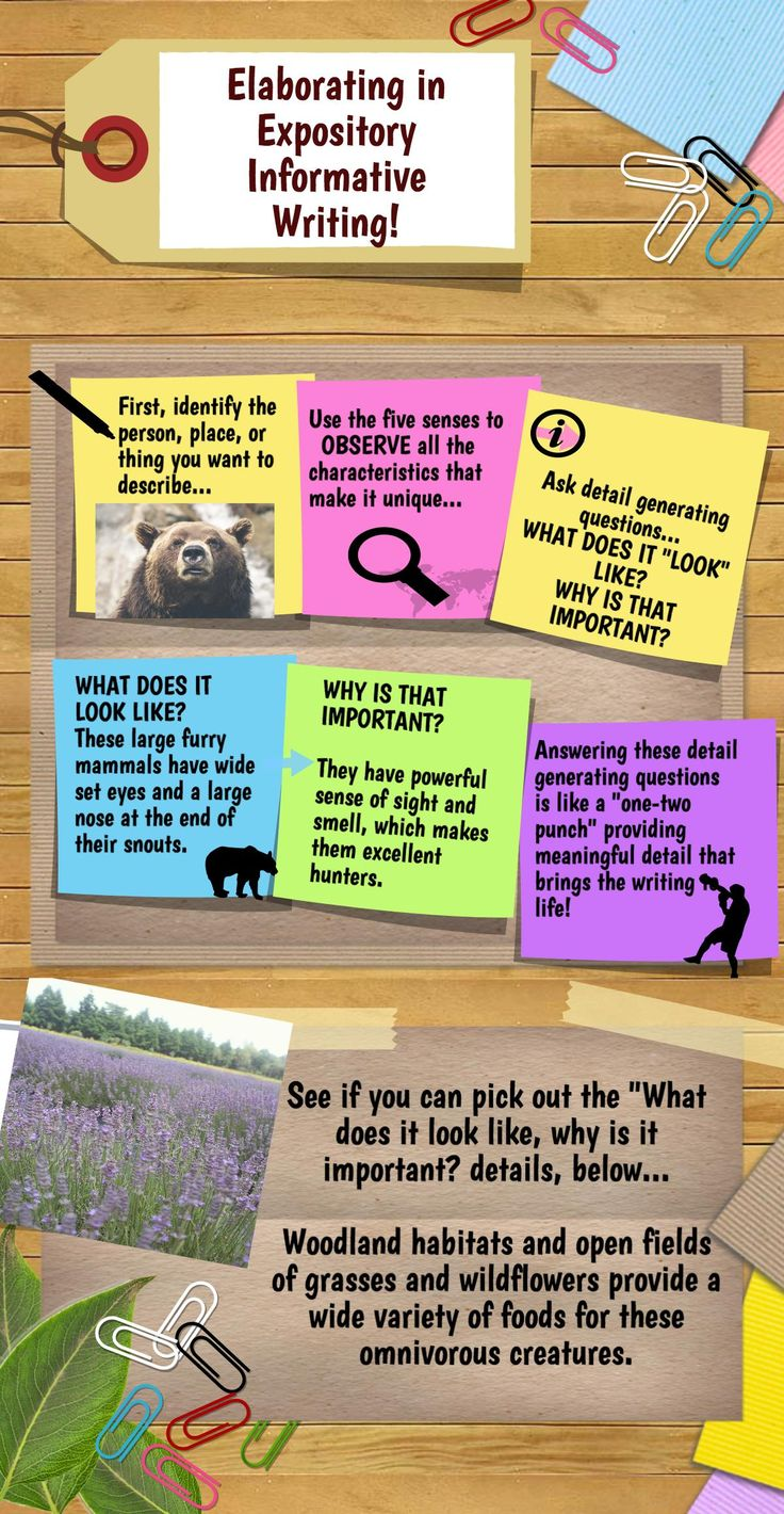 best ideas about informative writing 17 best ideas about informative writing informational writing writing graphic organizers and sentence structure
