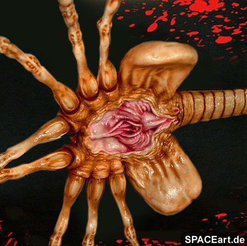 Alien 1: Face Hugger, Modell-Bausatz ... http://spaceart.de/produkte/al101.php