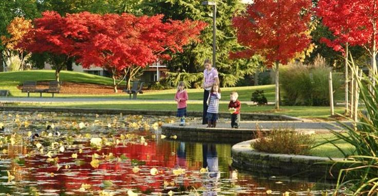 Salish Park from Coast Chilliwack Hotel - Image Copyright Tim Epp