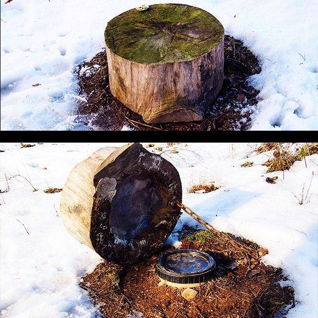 1000+ images about Hollow Log Geocaches on Pinterest ...