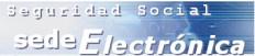 DNI electrónico para ciudadanos españoles: Seguridad Social