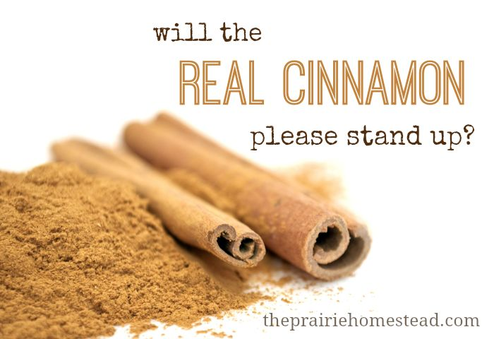 I never knew this before! Not all cinnamon is created equal--and some could actually be harmful!