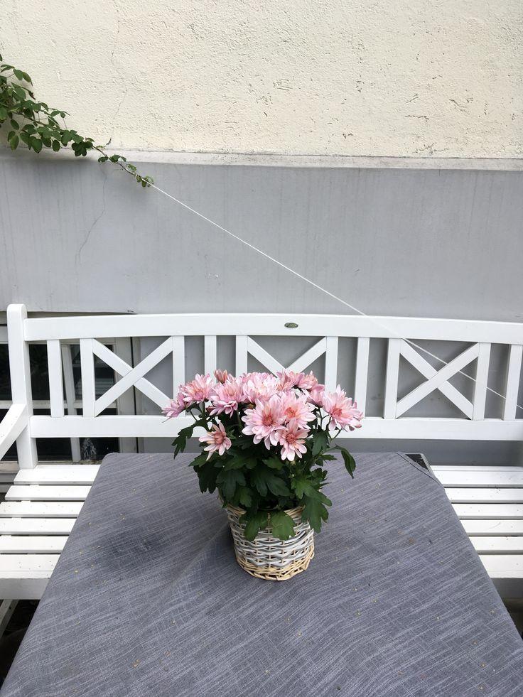 #flowers #style #nordicinspiration