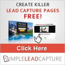 Create amazing Lead Capture Pages which will have your customers wanting to opt in! http://www.raeandmichael.com/free-tools-plugins/simple-lead-capture/