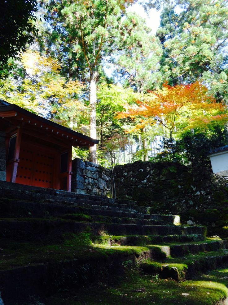 三千院 - Sanzenin Temple