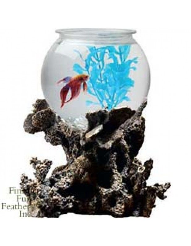 Tom Aquatics Betta Treasures Betta Bowl With Stand - Coral 1 Gallon
