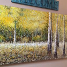 therapy office in Kingwood