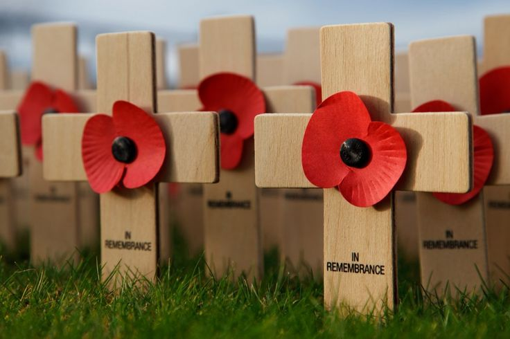 remembrance day photo | Fine Wallpaperss - ❈ www.pinterest.com/WhoLoves/Rememberance-Day ❈ #RememberanceDay #Armistice Day #PoppyDay