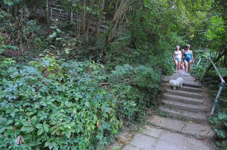 Spiral staircase/Csigalépcső