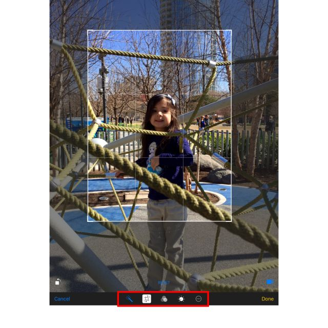 Crop and Edit Photos on Your iPad: How to Crop, Rotate and Touch Up an Image on the iPad