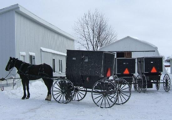 20 Best Amish Lifestyle Images On Pinterest Amish Amish