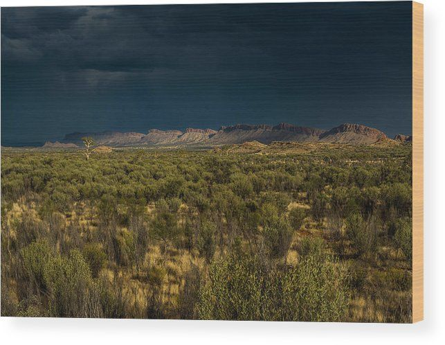 Outback Storm Wood Print by Racheal Christian.  All wood prints are professionally printed, packaged, and shipped within 3 - 4 business days and delivered ready-to-hang on your wall. Choose from multiple sizes and mounting options.