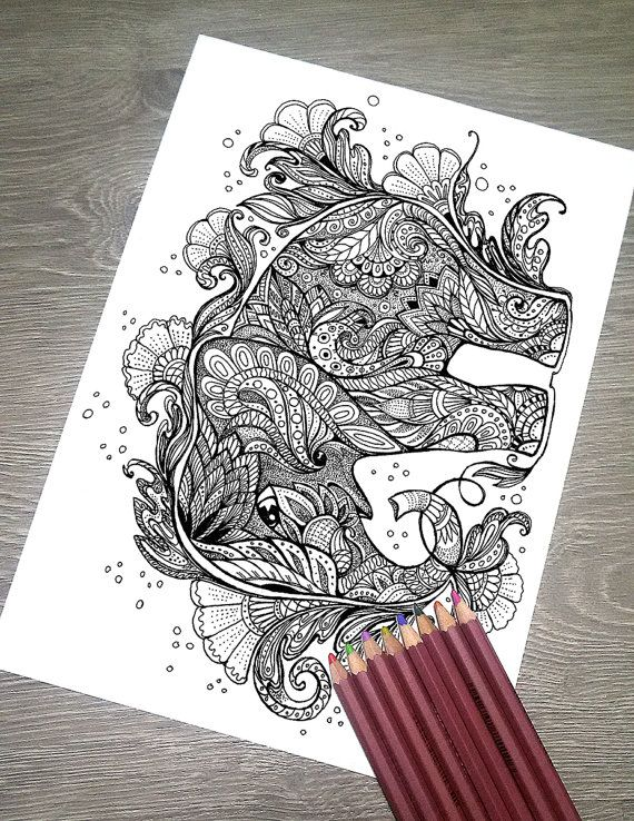 Coloring Pages For Adults Printable Elephant 47 Best Rhino Giraffe Lion Images