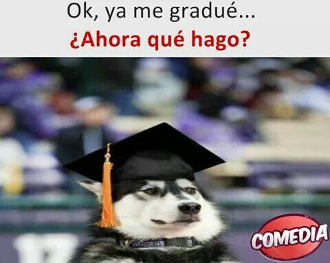 Post-graduación 🎓
